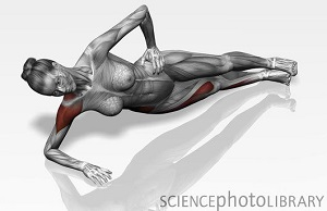 Side plank exercise