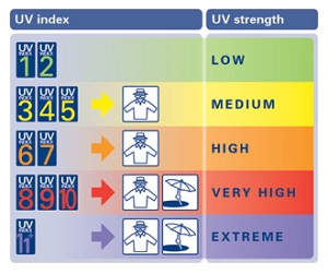 uv_index_chart